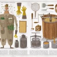 Il regno delle api - Piotr Socha